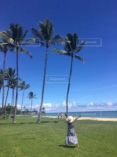 ハワイで夏休みの写真・画像素材[3248021]