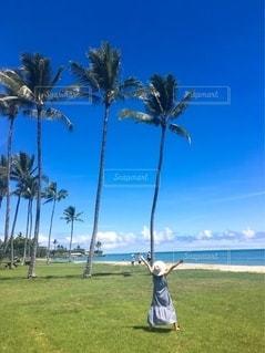ハワイで夏休み♡の写真・画像素材[3451045]
