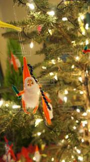 冬,樹木,イルミネーション,キラキラ,クリスマス,クリスマスツリー,オーナメント