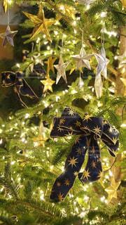 冬,樹木,イルミネーション,リボン,キラキラ,クリスマス,クリスマスツリー,オーナメント