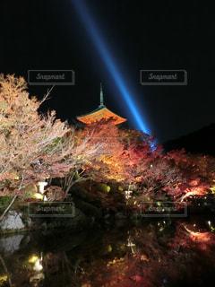 夜のライトアップされた街の写真・画像素材[1665728]