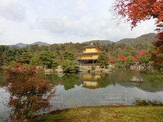 背景に金閣寺と木々 に囲まれた水の大きな体の写真・画像素材[1665739]