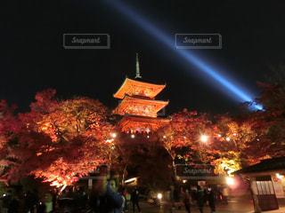夜の街の景色の写真・画像素材[1665767]