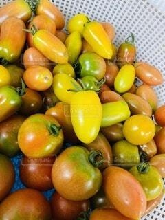 食べ物,赤,黄色,果物,トマト,野菜,ミニトマト,食品,カラー,食材,フレッシュ,ベジタブル,アイコ