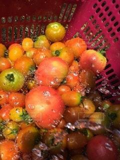 食べ物,赤,水,黄色,果物,トマト,野菜,ミニトマト,食品,カラー,食材,フレッシュ,ベジタブル,アイコ