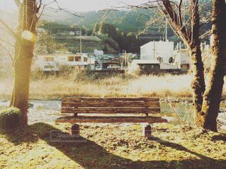 夕方のベンチの写真・画像素材[937015]