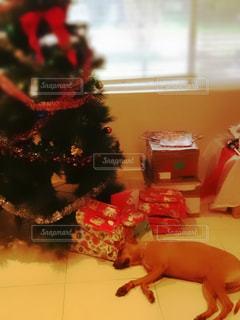 クリスマス,サンタクロース,クリスマスイブ,Christmas,クリスマスプレゼント,Christmas eve