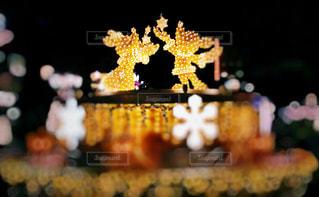 冬,キラキラ,クリスマス,Disneysea,Xmas