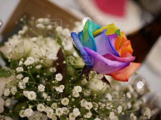 花,バラ,レインボー,フラワーアレンジ,虹色の薔薇