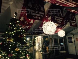 イルミネーション,クリスマス,クリスマスの店内