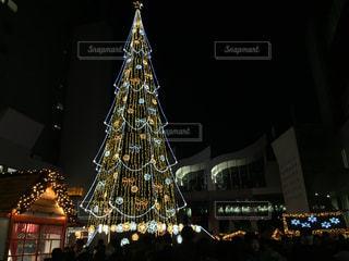 冬,夜,大阪,光,イルミネーション,旅行,旅,クリスマス,ツリー
