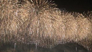 空一面の花火の写真・画像素材[1310325]