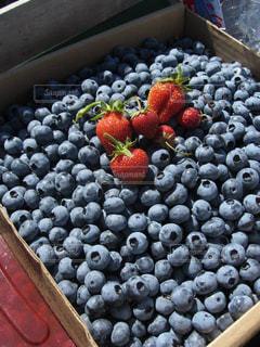 赤,紫,いちご,ブルーベリー,新鮮,フレッシュ,採りたて,ベリー好き