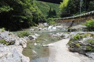 川の写真・画像素材[942533]