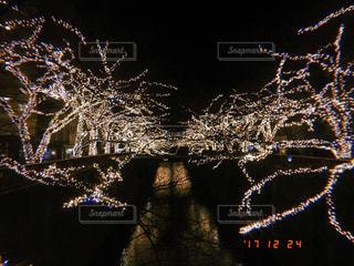 冬,夜,イルミネーション,クリスマス