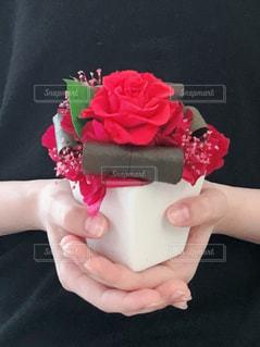 ピンクのケーキを持っている手 - No.1139300