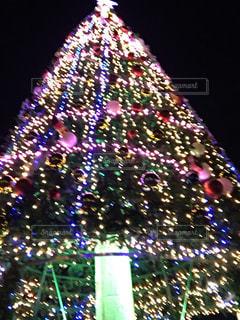夜,イルミネーション,クリスマスツリー
