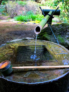竹から水の写真・画像素材[1051071]