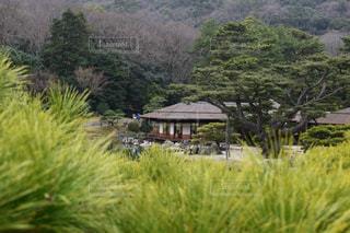 自然,公園,絶景,景色,休日,香川