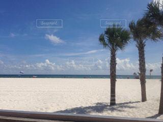 自然,風景,海,空,ビーチ,海岸,アメリカ,旅行,America,gulf shores,ガルフ ショアーズ,アラバマ州,Alabama