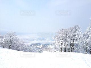 雪をスノーボードに乗る男覆われた斜面の写真・画像素材[950105]
