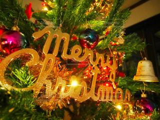 夜ライトアップされたクリスマス ツリーの写真・画像素材[950141]