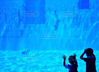 水の中に立っている人々 のカップルの写真・画像素材[1007000]