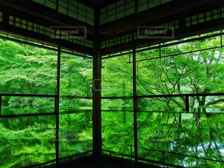 大きな窓の景色の写真・画像素材[1178190]