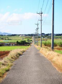 どこまでも続く道の写真・画像素材[951318]