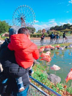 親子,子供,動物園,父,子,お父さん