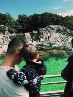 親子,水族館,ペンギン,子供,父,子,お父さん