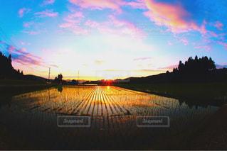 夕日の写真・画像素材[957002]