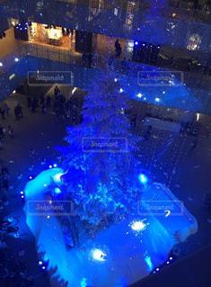 冬,青,クリスマス,クリスマスツリー