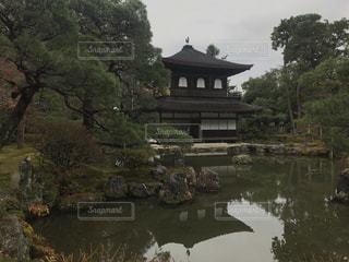 バック グラウンドで銀閣寺と木々 に囲まれた水の体の写真・画像素材[1687844]