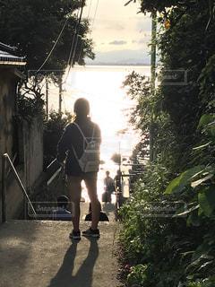 海,階段,後ろ姿,シルエット,女の子,坂道,江ノ島,細道