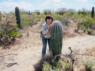 アリゾナのサボテンの写真・画像素材[1000160]