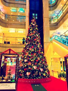 冬,イベント,クリスマス,クリスマスツリー,羽田空港,色鮮やか