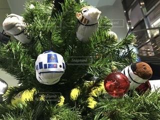 冬,クリスマス,ツリー,スターウォーズ,クリスマスツリー,映画