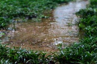 雨の日の水溜まりの写真・画像素材[2123533]
