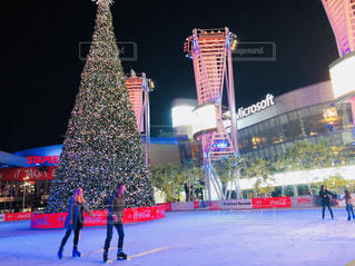 冬,屋外,美しい,クリスマス,ロサンゼルス,スケート