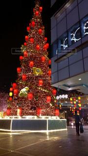 冬,クリスマス,ツリー,上海