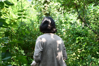 祖母の写真・画像素材[2466313]