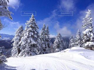 青空と白い世界の写真・画像素材[1657444]