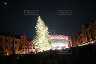 冬,クリスマス,クリスマスツリー,赤レンガ倉庫