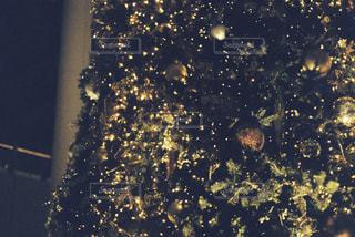 冬,屋外,日常,クリスマス,ツリー,film
