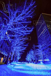 建物は夜ライトアップの写真・画像素材[1251495]