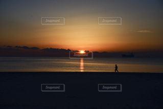朝日を走るの写真・画像素材[997392]