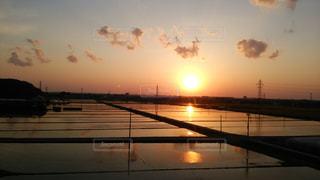 水田に移る夕日の写真・画像素材[961623]