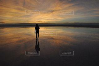 夕焼けを背にの写真・画像素材[961393]