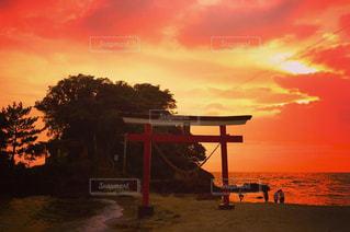 神社に沈む夕日の写真・画像素材[960475]